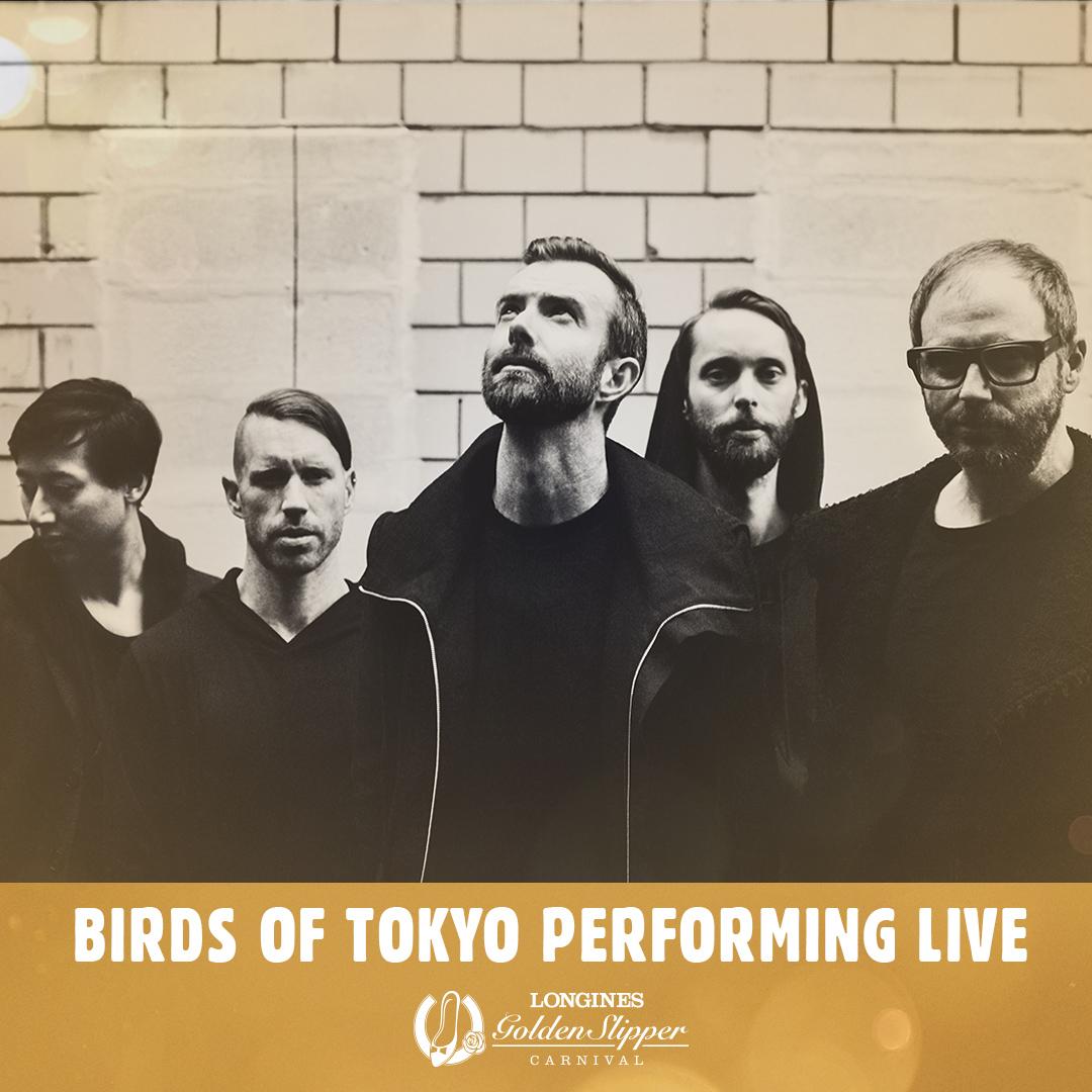 birds of tokyo - HD1080×1080